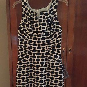 Adrianna Papell black/white polka dot dress new
